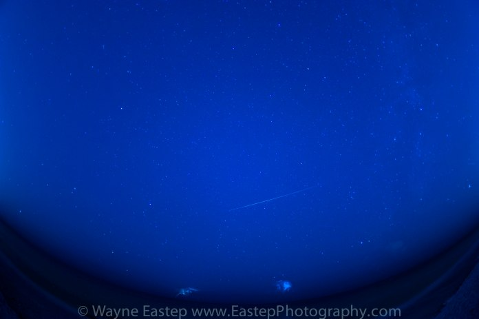 Perseid Meteor Shower,Photograph