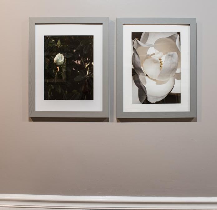 Fine Art Prints, Decor Prints, Interior Design, Photo, Photographs, Photographic Art, Photographic Exhibition