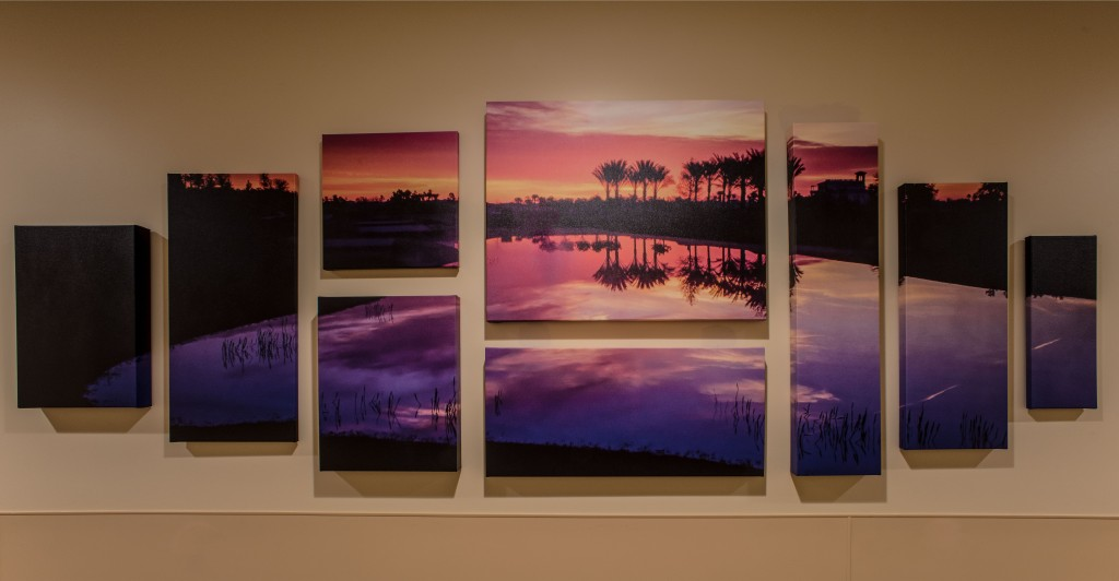 Photographic art display in medical center.